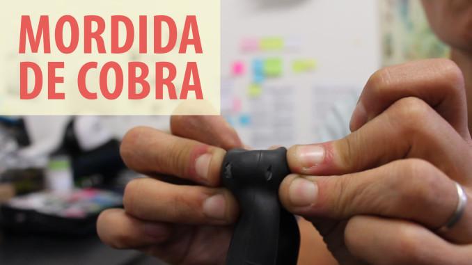 067-mordida-de-cobra